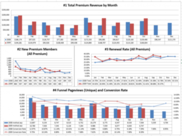 Marketing Analytics: Marketing Dashboard Sample | Part of a client's custom KPI dashboard (pulling data from Google Analytics, internal databases, and financial processor). Blurred to protect client information.